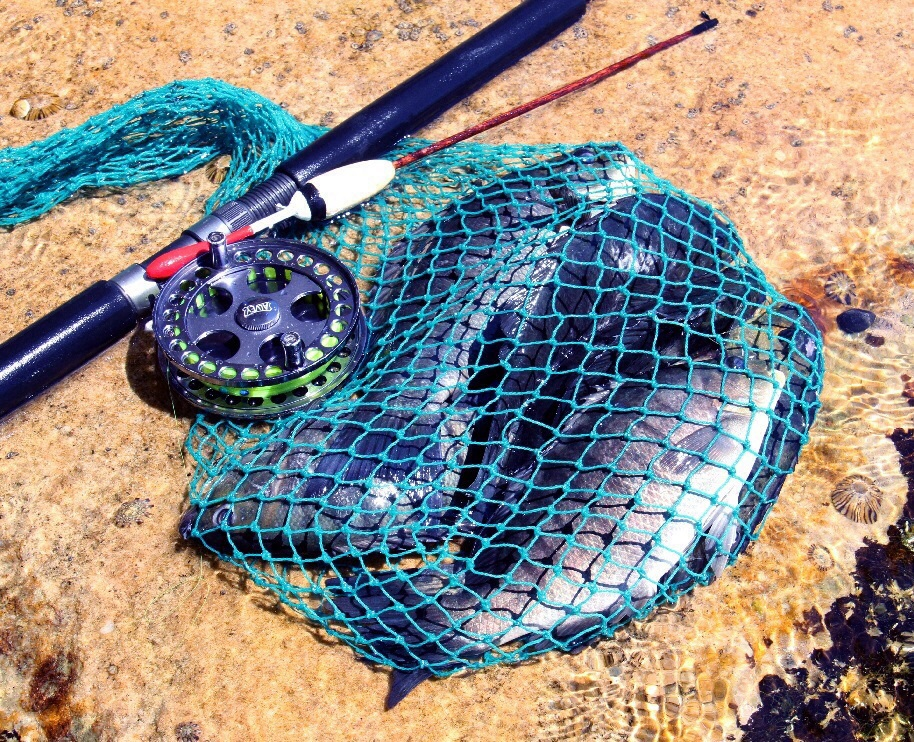 Centre piece reel, home made float and a bag full of blackfish.